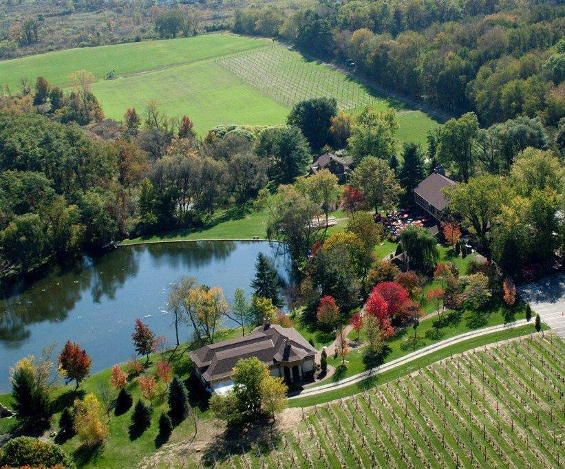 Gervasi Vineyard aerial view