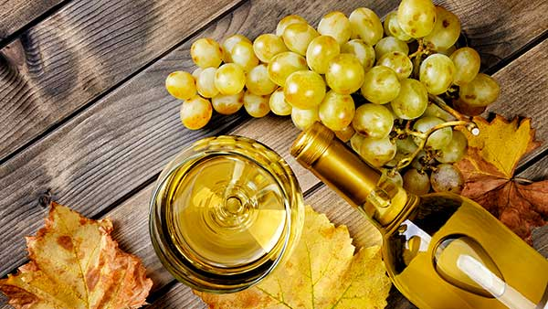 New Fall Wine at Gervasi